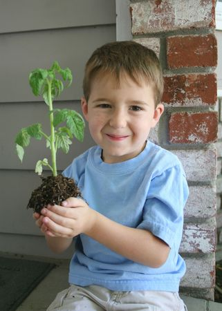 A Healthy Growing boy holds a healthy growing plant