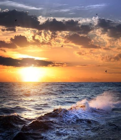 Stormy sea with sundown, clouds and birds / beautiful weather