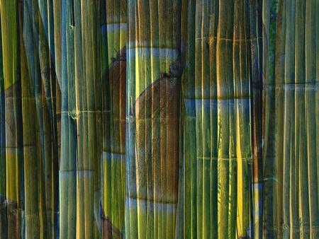 Design of bamboo stems