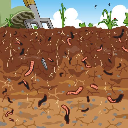 illustration of earthworms in garden soil