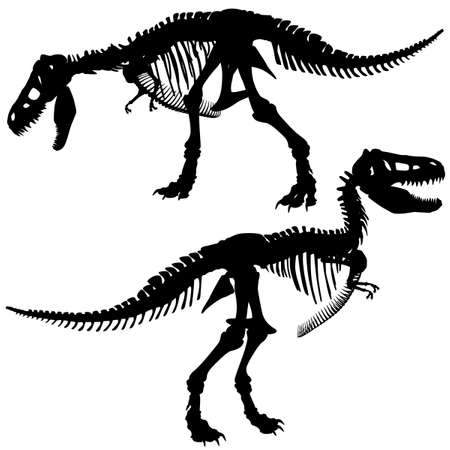 Editable silhouettes of the skeleton of a Tyrannosaurus rex dinosaur