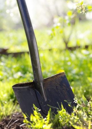 Close up of garden shovel