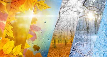 Photo pour Beautiful seasonal background - two seasons of year collage. Vibrant colorful images of different time of year - fall and winter. Weather forecast concept. - image libre de droit