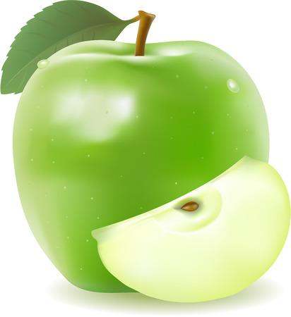 Ilustración de realistic green apple with segment vector - Imagen libre de derechos