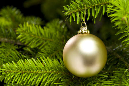 Ball shape Christmas decoration in real tree
