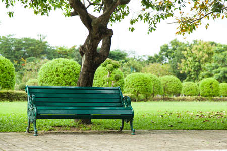 Bench under a tree. A seat to rest. Along the corridor. Within the park.