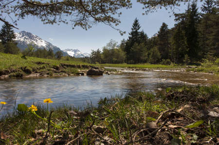 Photo pour nice nature landscape with water, flowers, grass, meadows and tyrol mountains - image libre de droit