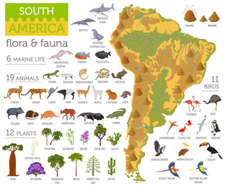 Illustration pour South America flora and fauna map, flat elements. Animals, birds and sea life big set. Build your geography infographics collection. Vector illustration - image libre de droit