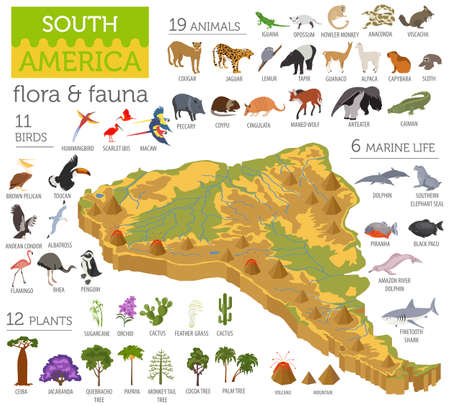 Ilustración de Isometric 3d South America flora and fauna map elements. Animals, birds and sea life. Build your own geography infographics collection. Vector illustration - Imagen libre de derechos