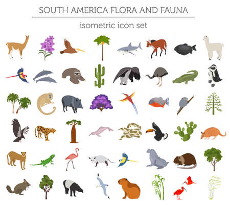 Illustration pour Isometric 3d South America flora and fauna elements. Animals, birds and sea life. Build your own geography infographics collection. Vector illustration - image libre de droit