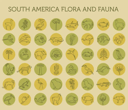 Illustration pour Flat South America flora and fauna  elements. Animals, birds and sea life simple line icon set. Vector illustration - image libre de droit