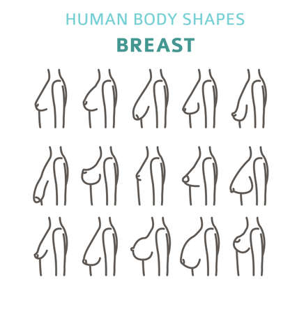 Illustration pour Human body shapes. woman breast form set. Vector illustration - image libre de droit