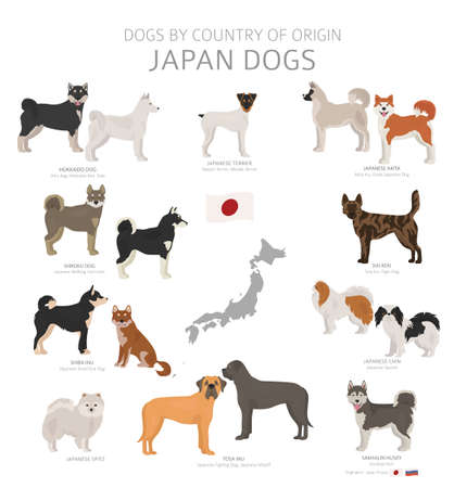 Illustration pour Dogs by country of origin. Japanese dog breeds. Shepherds, hunting, herding, toy, working and service dogs  set.  Vector illustration - image libre de droit