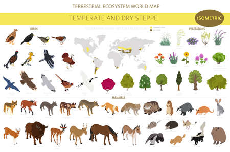 Illustration pour Temperate and dry steppe biome, natural region isometric infographic. Prarie, steppe, grassland, pampas. Terrestrial ecosystem world map. Animals, birds and vegetations ecosystem design set. Vector illustration - image libre de droit