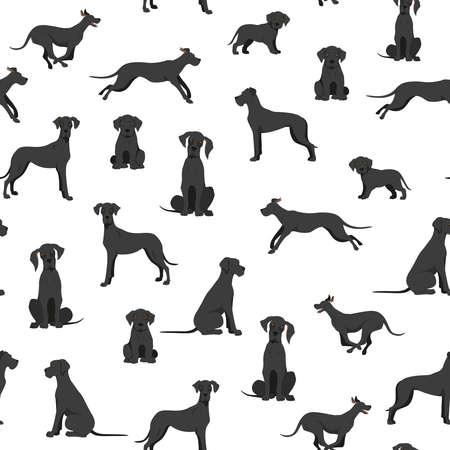 Photo pour Great dane seamless pattern. Different variaties of coat color dog set. Vector illustration - image libre de droit