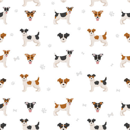 Illustration pour Jack Russel terrier in different poses and coat colors seamless pattern. Adult dogs and puppy set. Vector illustration - image libre de droit