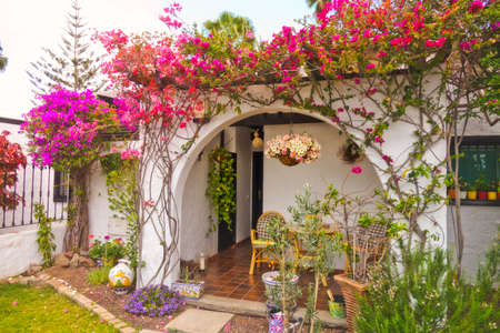 Beautiful flowers at the entrance to one of the homes in Maspalomas in Gran Canaria Canary Islands