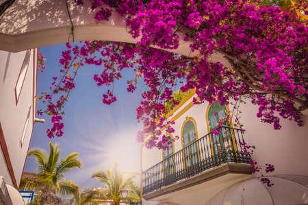 Windows in one of the homes in Puerto de Mogan Grand Canaria Spain