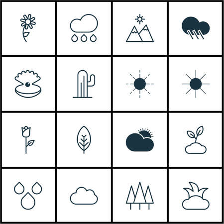 Set Of 16 Nature Icons. Includes Sunny Weather, Sun, Bush And Other Symbols. Beautiful Design Elements.