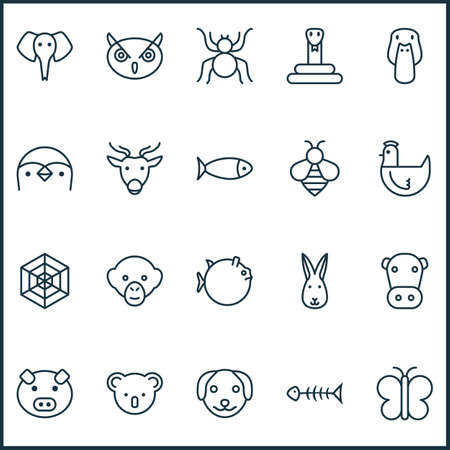 Nature Icons Set With Piglet, Spider, Puppy And Other Butterflyfish