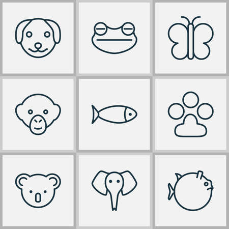 Nature icons set with koala, frog, seafood and other moth