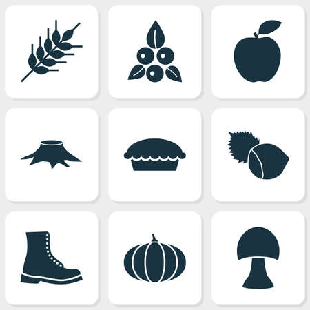 Seasonal icons set with berries, wheat, boot and other tart elements. Isolated vector illustration seasonal icons.