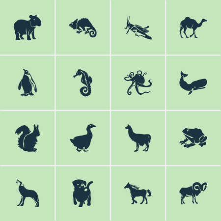 Illustration pour Animal icons set with wolf, capybara, cachalote and other alpaca  elements. Isolated vector illustration animal icons. - image libre de droit