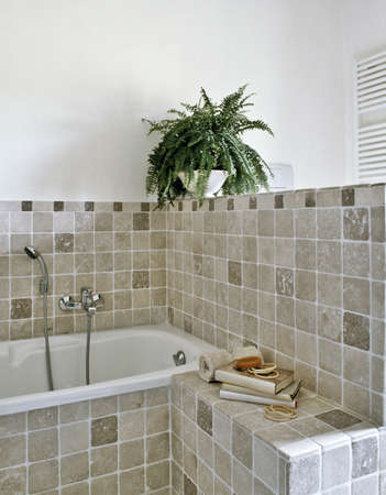 detail of bathtub in a modern bathroom with plant