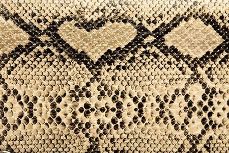 snake texture