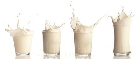 milk splash on a glass on white background