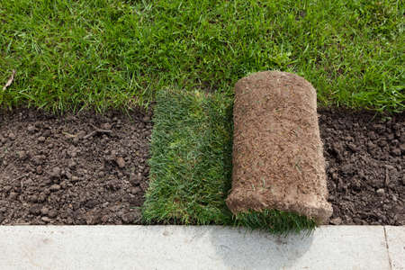 Foto de Rolls of turf or turfgrass, close-up. Landscaping of territory in the park. - Imagen libre de derechos