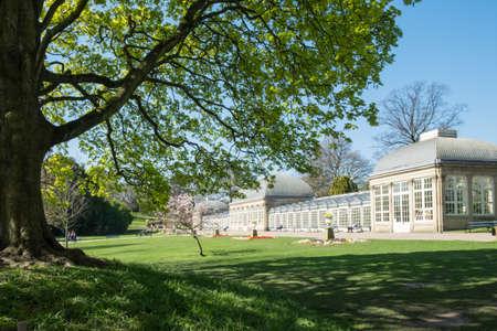 Edwardian glasshouses at Sheffield Botanical Gardens
