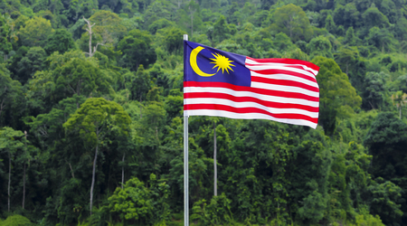 Photo pour Malaysia Flag, Jalur Gemilang waving with the background of Malaysian rainforest trees. - image libre de droit