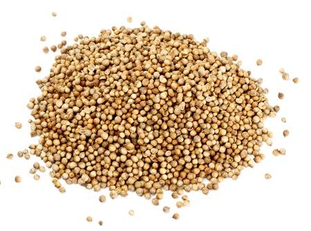 many coriander seeds isolated on white background