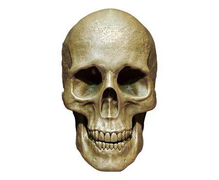 Foto de Skull isolated in background 3d render - Imagen libre de derechos