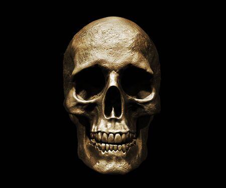 Photo pour Skull isolated in background 3d illustration - image libre de droit