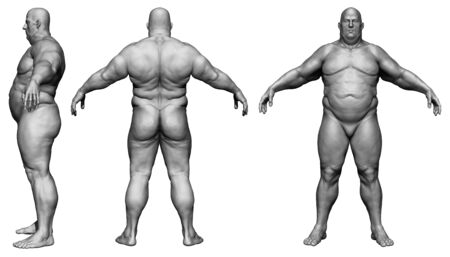 Photo pour The human body in overweight - Body fat man - isolated model - 3d render - image libre de droit