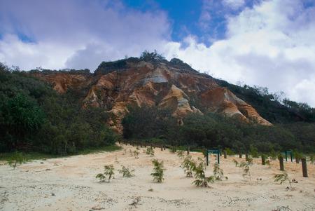 A bedrock escarpment by a Fraser Island beach