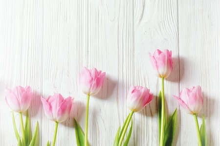 Photo pour Pink tulip flowers on white wooden vintage background with copy space. - image libre de droit