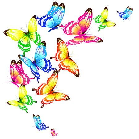 Illustration for Beautiful color butterflies on a white - Royalty Free Image