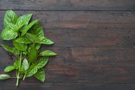 green Basil on a dark wood background