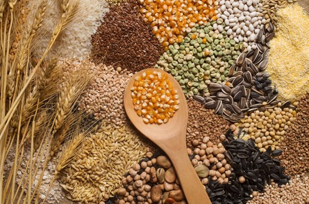 Photo for Cereals collection - Royalty Free Image