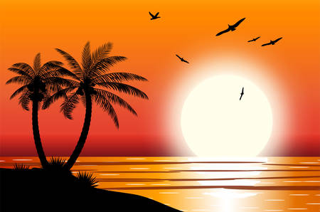 Illustration for Silhouette of palm tree on beach. Sun with reflection in water and seagulls. Sunset in tropical place. Vector illustration - Royalty Free Image
