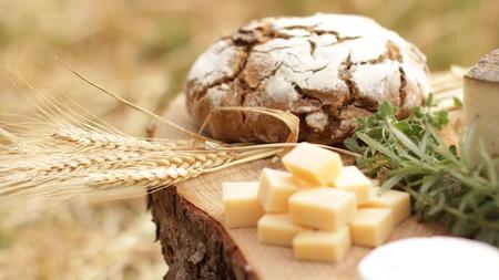 wine Blue cheese gouda bread grape food parmesan swiss dairy healthy france milk