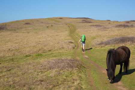 Photo pour Wild pony with walker walking the south west coast path North Cornwall between Perranporth and Holywell Bay with backpack - image libre de droit