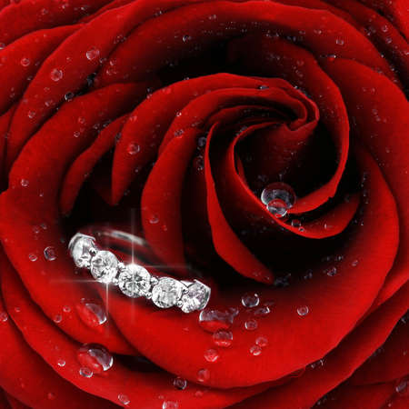 Macro closeup of red rose with dew drops and beautiful sparkling diamond ring