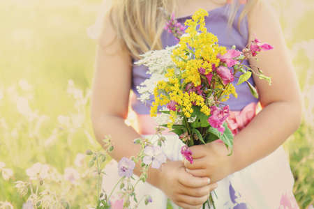 Little girl holding wild flowers bouquet on a grassy sunny summer meadow field