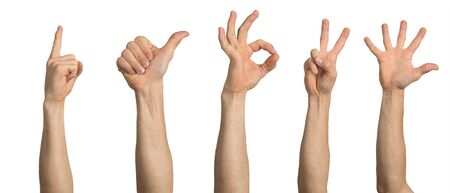 Photo pour Man hand showing various gestures. Okay, finger pointing, thumb up, spread fingers and victory signs. Human hand gesturing isolated on white background. Raised arms presenting popular gestures. - image libre de droit