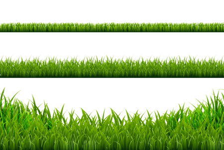 Grass Borders Set, Vector Illustration