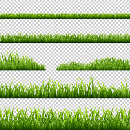 Grass Borders Set, Isolated on Transparent Background, Vector Illustration